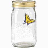 Flying Butterfly in a Jar