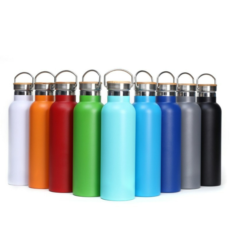 Insulated Double Wall Stainless Steel Water Bottle with Handle [
