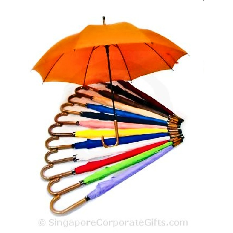 "Umbrella with wood-like handle (24"")"